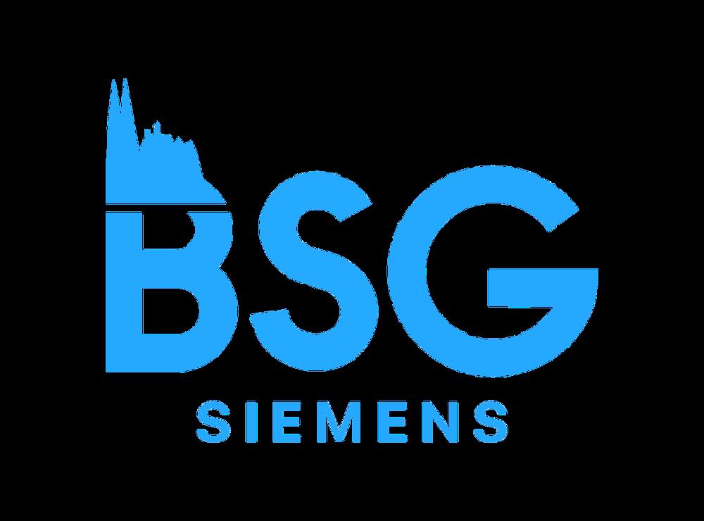 BSG Siemens Osram Infineon